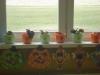 Sadíme kvetinky -2.C
