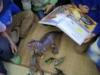 Návšteva Dinosaurie -1.A