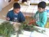 Aranžovanie ikebany k Vianociam -2.A