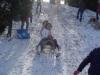 Sneholympiáda -3.B